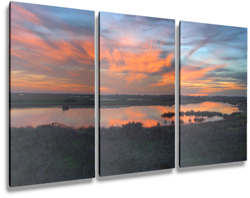 Triple portrait canvas.